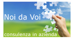 Noi da Voi - consulenza in azienda